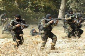 army-commandos